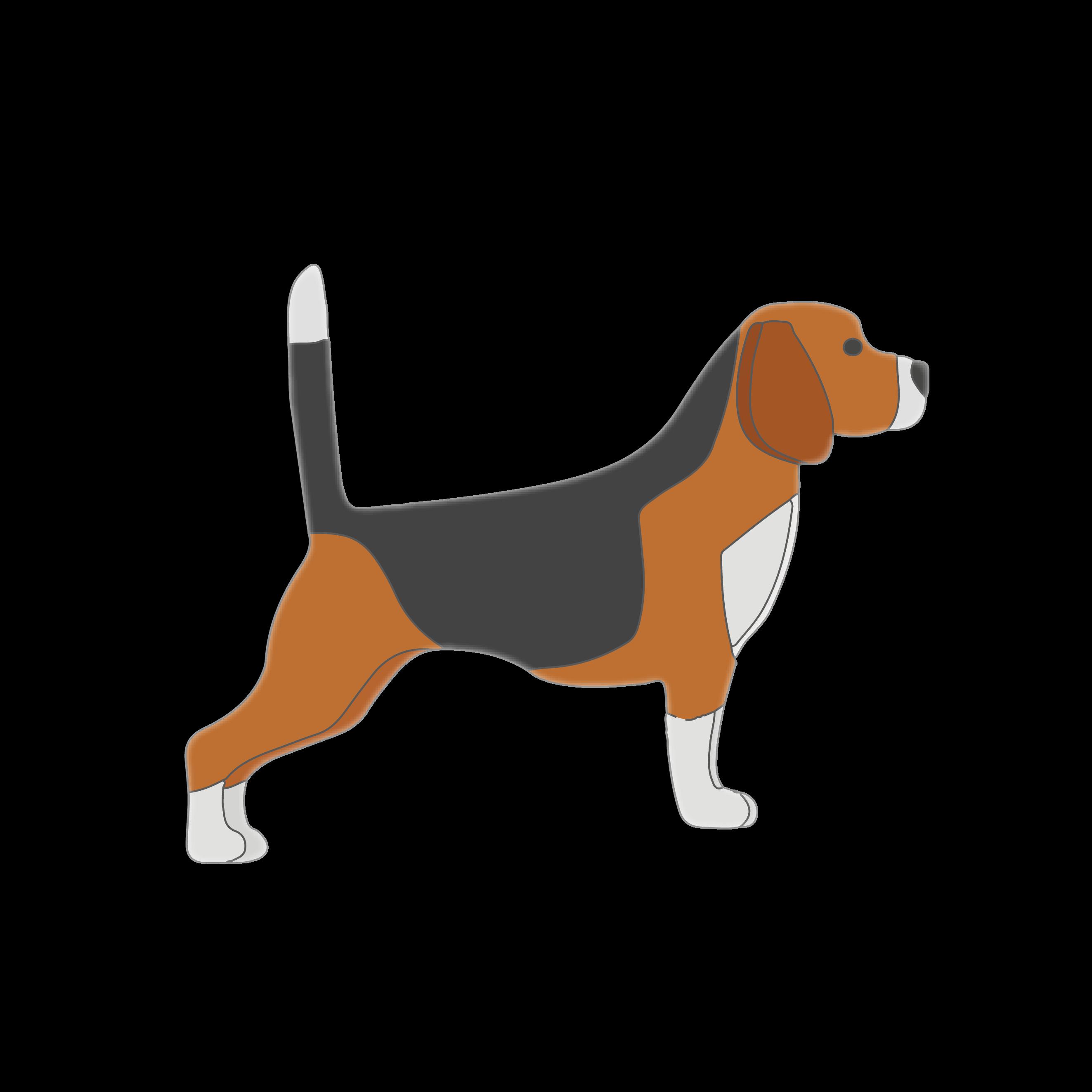 Good Story Beagles
